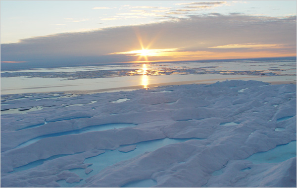 Arctic Melt Unnerves the Experts
