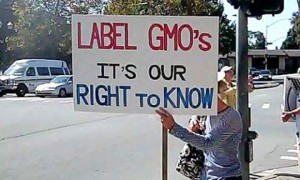 California Puts Initiative To Label Genetically Modified Foods On November Ballot