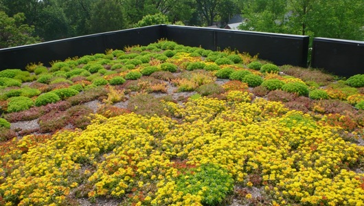 Portland to get massive green roof atop the least Portland-y location possible: A Walmart