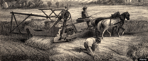 farming in the new france Not just sheep all about farming in new zealand by amy cooper, greatsights new zealand when you think of new zealand, you think of green hills dotted with fluffy little sheep, right.