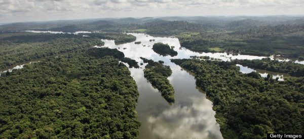 Amazon Deforestation In Brazil Hits Record Low, Says Government