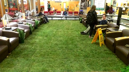 Cornell Installs Indoor Lawn to Soothe Students During Finals (Photos)