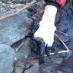 Coal-Slurry Spill Devastates West Virginia Creek