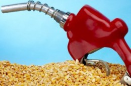 Study Says Ethanol Does Not Qualify as a 'Renewable Fuel'