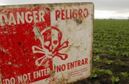 California May Heavily Restrict Pesticide Chlorpyrifos, Which Sickened Dozens In Recent Years