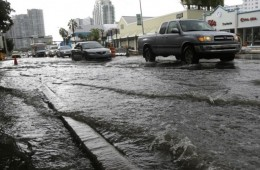 South Florida City Votes To Secede In Last-Ditch Effort To Avoid Being Swallowed By The Sea