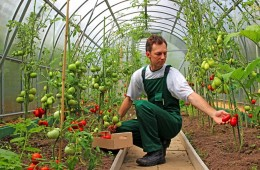 10 Ways to Support the Next Generation of Farmers