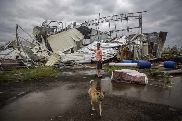 A dog walks past as a man stands in front of a factory building which was destroyed by Typhoon Rammasun, <a href=