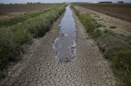 California's Drought Could Upend America's Entire Food System