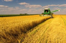 How Monsanto Could Get Even Bigger and More Powerful