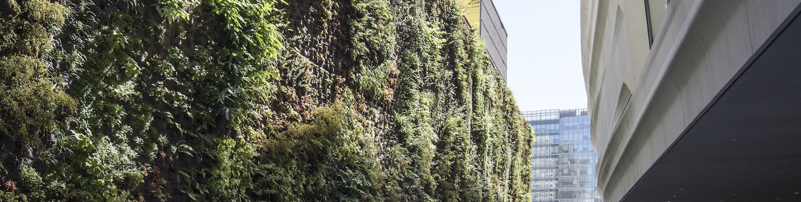 SFMOMA-Living-Wall-by-Habitat-Horticulture-1-1580x399