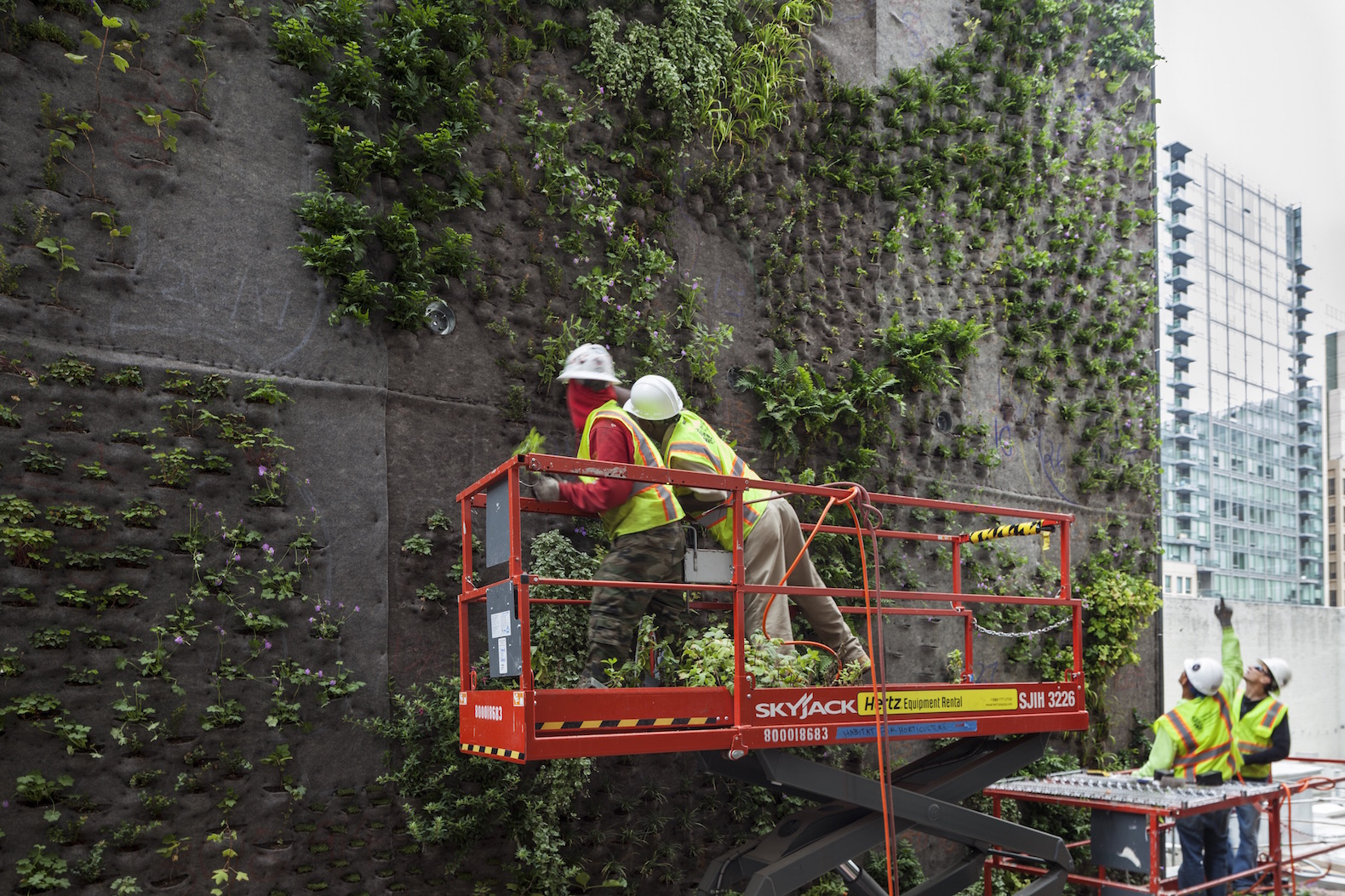 SFMOMA-Living-Wall-by-Habitat-Horticulture-4