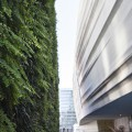 SFMOMA-Living-Wall-by-Habitat-Horticulture-5-120x120