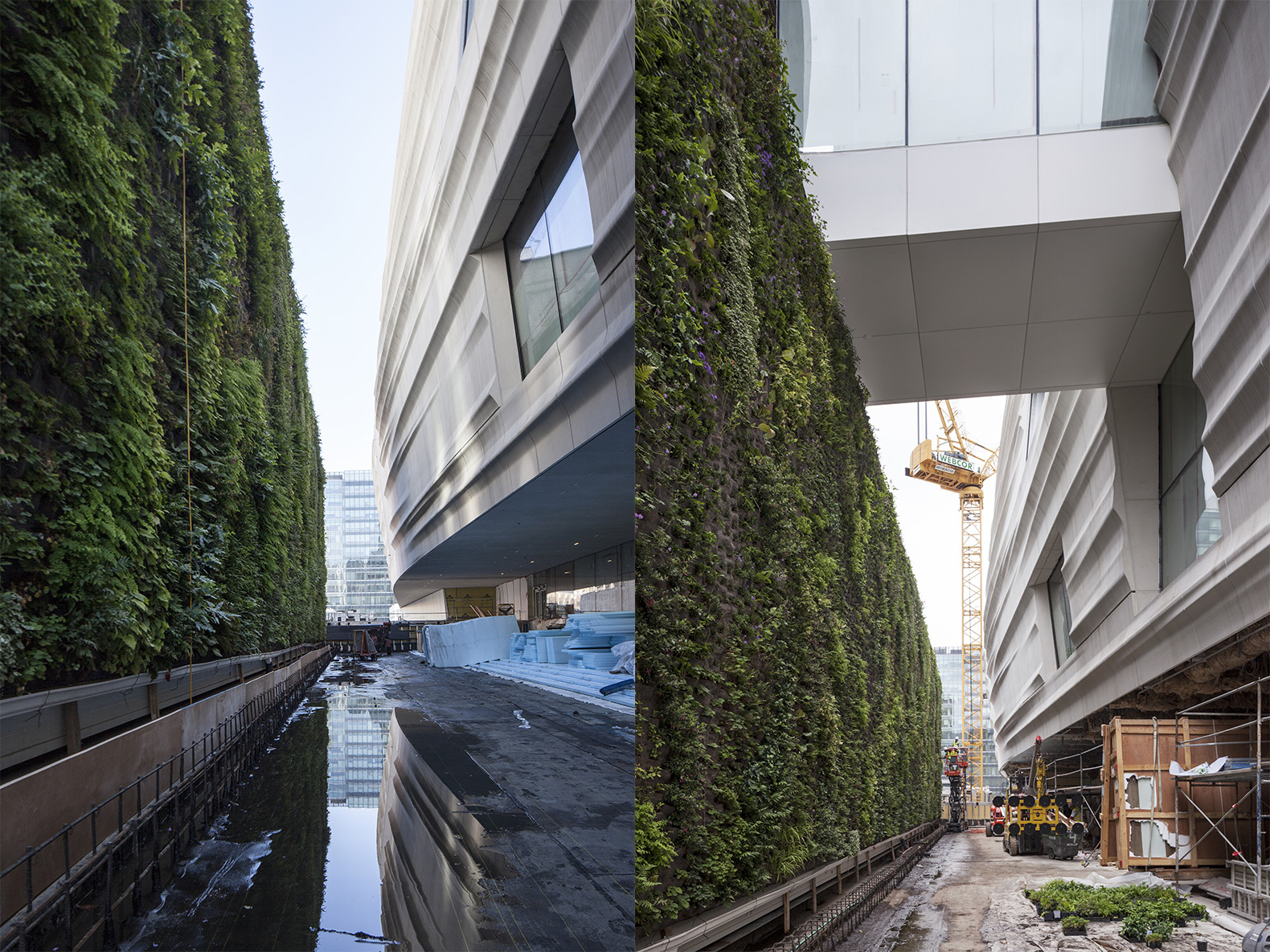SFMOMA-Living-Wall-by-Habitat-Horticulture-6