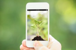 Sustainable Tech: Recycling, Photosynthesis Charging and Energy Star