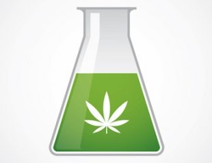 marijuana_science