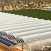 DESERT FARM GROWS 17,000 TONS OF FOOD WITHOUT SOIL, PESTICIDES, FOSSIL FUELS, OR EVEN GROUNDWATER