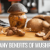 THE SCIENCE OF MUSHROOMS: NUTRITIONAL VALUE AND  HEALTH BENEFITS